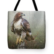 Hawk And Barbed Wire Tote Bag