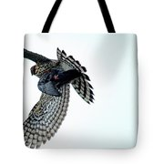 Osprey Flying Away With Prey Tote Bag