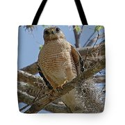 Hawk Gawk Tote Bag