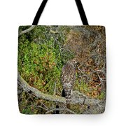 Hawk In Hiding Tote Bag