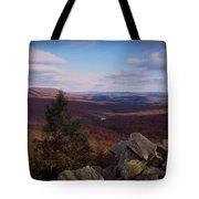Hawk Mountain Sanctuary Tote Bag by David Dehner