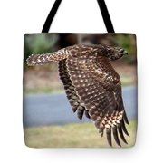 Hawk On The Fly Tote Bag
