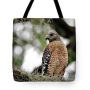 Hawk On Watch Tote Bag