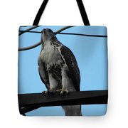 Hawk Urban Hunting Tote Bag