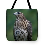 The Philosopher Tote Bag