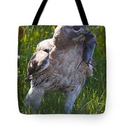 Hawk With Dinner Tote Bag