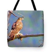 Hawk With Prey Tote Bag