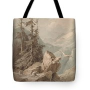 Hawks On A Mountain Tote Bag