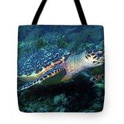 Hawksbill Sea Turtle 3 Tote Bag