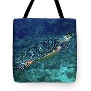 Hawksbill Sea Turtle 5 Tote Bag