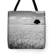 Hawksmoor Tote Bag by John Edwards