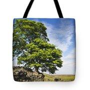 Haworth Moor Sycamore Tote Bag