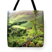 Hawthorn Branch With View To Wicklow Hills. Ireland Tote Bag