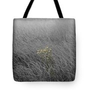 Hay Daisy In The Fog Tote Bag