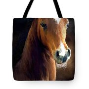 Hay Dude Tote Bag