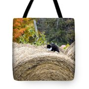 Hay Kitty Tote Bag