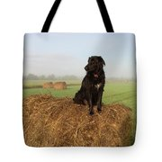 Hay There Black Dog Tote Bag