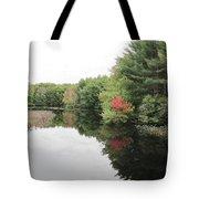 Haybrook Maine Foliage 6 Tote Bag
