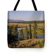 Hayden Valley Tote Bag