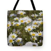 He Loves Me Daisies Tote Bag