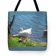 Head In A Hole Tote Bag