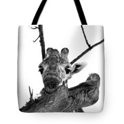 Head In The Trees Tote Bag