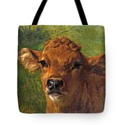 Head Of A Calf Tote Bag
