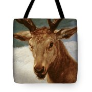 Head Of A Stag Tote Bag