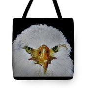 Head Of An Eagle  Tote Bag