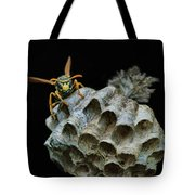 Head-on - Paper Wasp - Nest Tote Bag