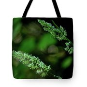 Headed Out Tote Bag