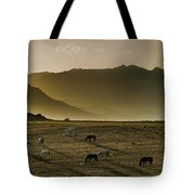 Heading Home In The Evening Tote Bag