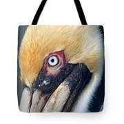 Headshot Brown Pelican Tote Bag