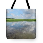 Headwaters Of The Mississippi Tote Bag