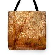 Hear The Silence - Holmdel Park Tote Bag