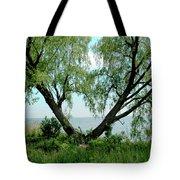 Heart Tree On Lake Saint Clair Tote Bag