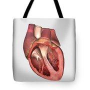 Heart Valves Showing Pulmonary Valve Tote Bag