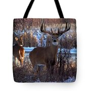 Heartbeat Of The Wild Tote Bag