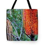 Heath Banksia From Fairfax Walk Tote Bag