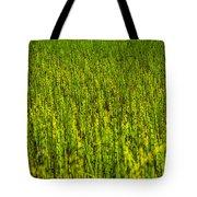 Heather Lake Grass 2 Tote Bag