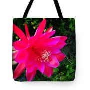 Heavenly Epiphyllum Orchid Cactus Tote Bag