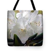 Heavenly Glimpse Tote Bag