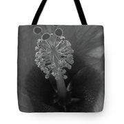 Heavenly Hibiscus Bw 01 Tote Bag