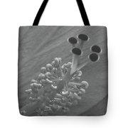 Heavenly Hibiscus Bw 11 Tote Bag