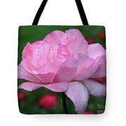 Heavenly Pink Rose Tote Bag