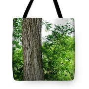 Heaven's Tree - Color Version Tote Bag