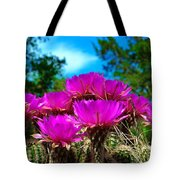 Hedgehog Cactus Tote Bag