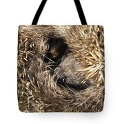 Hedgehog Curled Up Tote Bag