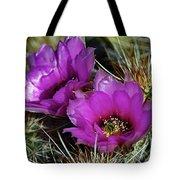 Hedgehog Morning Tote Bag