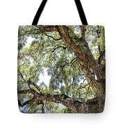 Heights Tote Bag